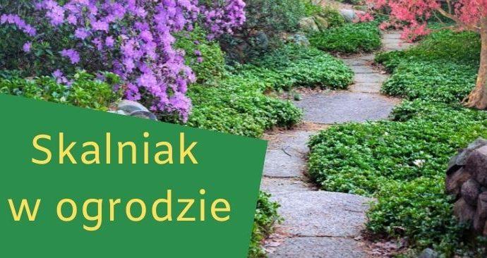 Skalniak w ogrodzie